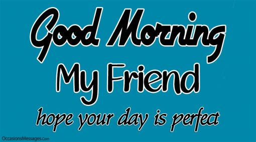 Good Morning my friend. Hope your day is perfect.