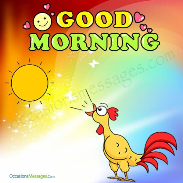 Best Funny Good Morning Messages Occasions Messages